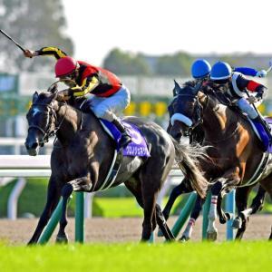 関西馬有利のフェブラリーステークス!鍵は当日の馬体重と4つのレース!