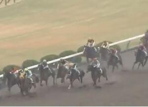 アンタレスステークスは外枠に入った5歳馬が中心!名古屋大賞典組も要チェック!