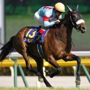 1、2番人気が強いオークスはたった2つのレースから勝ち馬が出る!!
