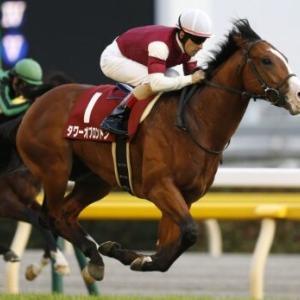 予想難解な函館スプリントステークスは牝馬と関西馬を狙え!