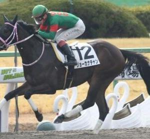 1番人気が11連敗中の北九州記念は牝馬中心で中穴を狙え!