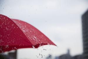 【知っているとちょっと得する】「雨の日サービス」があるお店たち