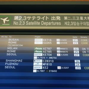 大韓航空エコノミークラスの特別機内食 KE704 成田ー仁川 KR703 仁川ー成田 ベジタリアン、シーフード、フルーツ