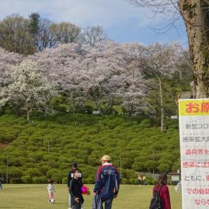 桜色ピンクアイシャドウ
