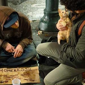メンタリストDaiGo氏辛口【ホームレスの命は猫より軽い】