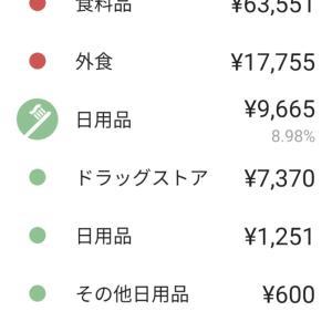 6月の食費に驚愕!過去最高額