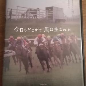 映画「今日もどこかで馬は生まれる」を観て。 向き合わなければいけない現実