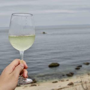 ロングアイランドのワイナリー巡り 海を望む「Kontokosta Winery」
