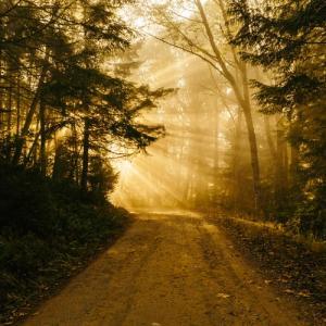 神を信じると人生はこう変わる①二人で歩く道