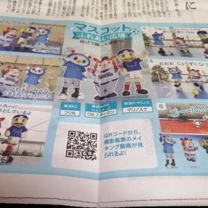 朝日新聞ハマスポ版に登場のマリノスケ