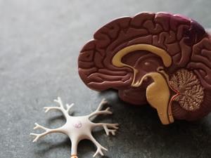 【頭痛】脳腫瘍・くも膜下出血・髄膜炎の見極め方