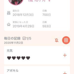 生誕700日(だったらしい)