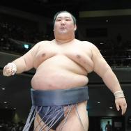 今日の大相撲千秋楽が見逃せない!徳勝龍関がもし優勝したらと想像するとわくわくします
