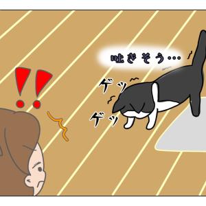 空気読んでくれたんじゃないの~~?!