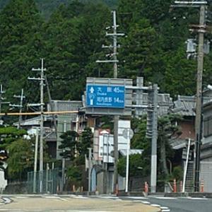 子猫と和歌山へ