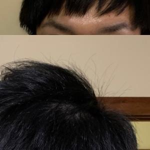 19日目 散髪してきました