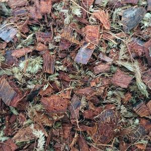 rhodocompost 培養土