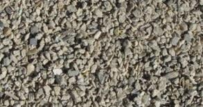 SF-5 ブライオゾーア化石層礫
