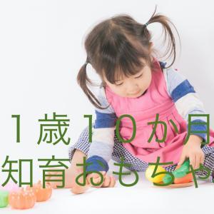 [1歳10か月]知育おもちゃで遊ぶ
