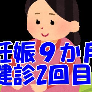 [妊娠9か月]9か月健診2回目[初の一時保育]