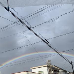昨日は綺麗な虹が見えた