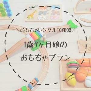 【口コミ】1歳7ヶ月娘が【TOYBOX】でレンタルした知育玩具を大公開!