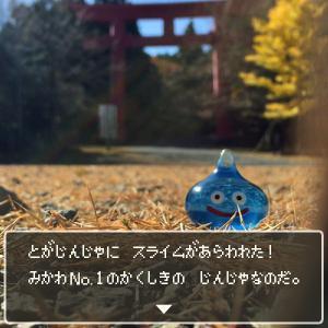 砥鹿神社にスライムがあらわれた!