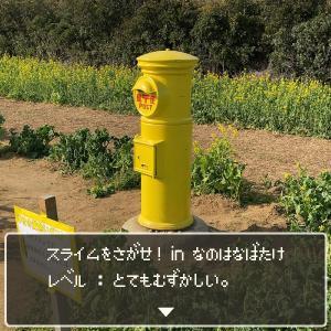 スライムをさがせ!in菜の花畑