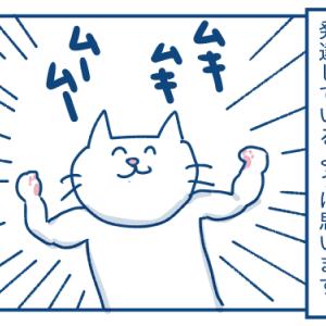 毎日筋トレしている猫の話