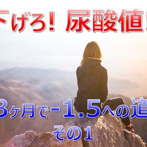 下げろ!尿酸値!|3ヶ月で8.4から6.9まで下げた方法(1)