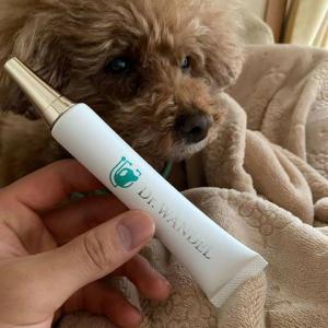 犬の歯周病ケア用品「ドクターワンデル」を買ってみた。口コミ、使ってみた感想。