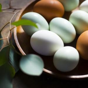 コレステロールが気になる!卵は結局1日何個まで食べていいの?