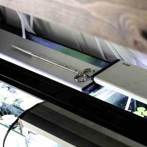 LEDライト(水槽用ライト)の特徴やメリット、デメリットを細かく解説します。