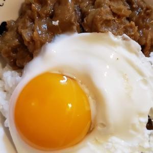 【晩ごはん献立】豚肉と大根の煮物ときんぴらごぼう