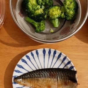 【晩ごはん献立】鯖の照焼と茹でブロッコリーと金平ごぼう