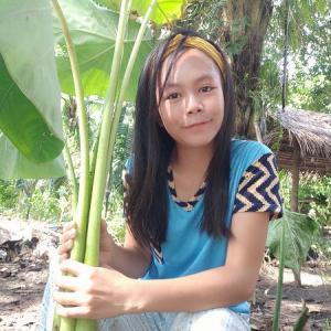 フィリピン人の手足が実は小さい件/不気味な草履を調理して食べる動画/コメントピックアップ