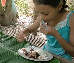 今日のジャングル食は鯉のプリト/怪しいノノイ