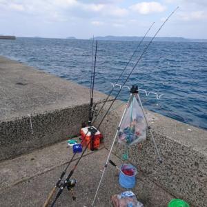 ファミリー釣りに最適なロッドは何でしょうか?
