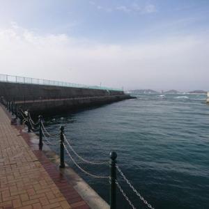 福岡の福間漁港海浜公園(ファミリー釣り場:その3)