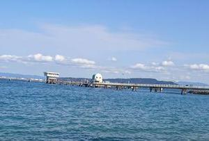 福岡の海釣り公園(ファミリー釣り場:その4)