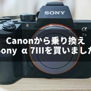 Canonから乗り換えてSony α7IIIを買いました【初のフルサイズ一眼】