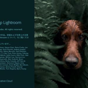 Adobe Photoshop Lightroomをフォトプランではなく単体プランで契約した話