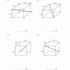 三平方の定理(直方体の対角線)