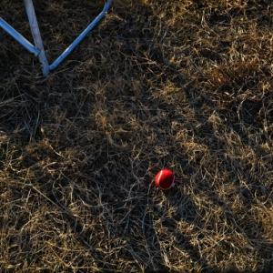赤いボールの印象