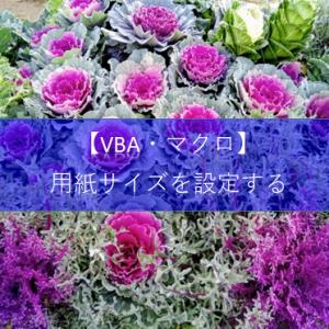 【ExcelVBA 印刷】印刷する用紙サイズを設定する方法について教えて!