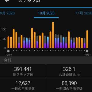 10月の30万歩チャレンジ結果報告