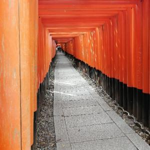 京都トレイル