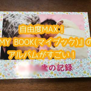 自由度MAX!!『MY BOOK(マイブック)』のアルバムがすごい!