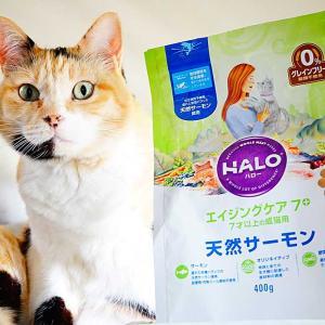 『ハロー』キャットフードの良い所と悪い所!愛猫に食べさせた感想も書いた。
