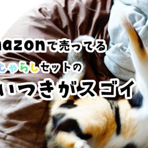 本能むき出しで遊びだす!Amazonの猫じゃらしセットの食いつきが凄い。